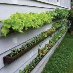 Gutter Vertical Garden 10 Easy Diy Vertical Garden Ideas