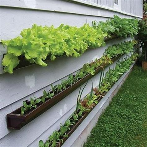Cheap Vertical Garden 10 Easy Diy Vertical Garden Ideas