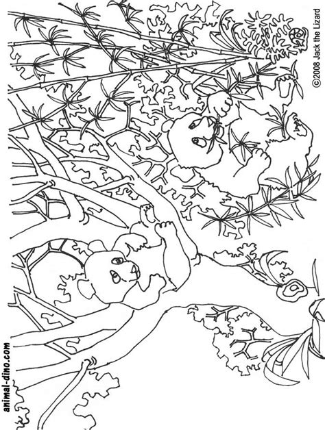 coloring page of giant panda giant panda coloring page az coloring pages