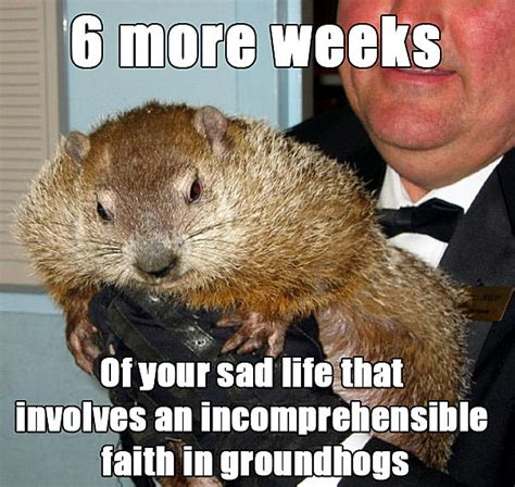groundhog day reddit 8 groundhog day memes from punxsutawney phil