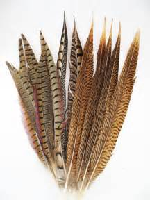 Home Design And Decor Wish Inc lamplight feather premium decorative feathers for sale