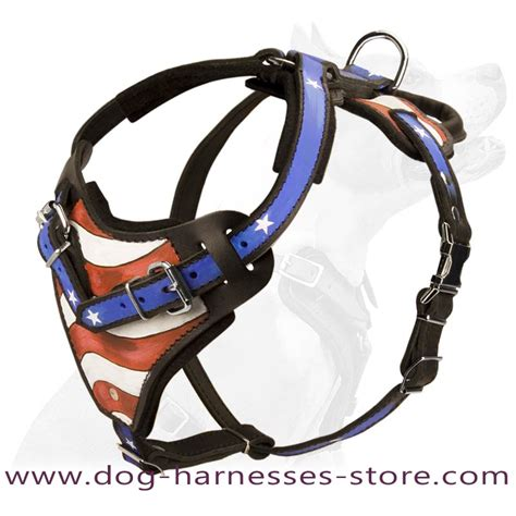 Handmade Harness - painted designer custom handmade leather harness