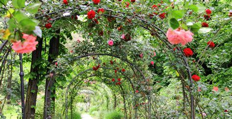 garten romantik rosenbogen romantik auf dem gartenweg 183 ratgeber haus