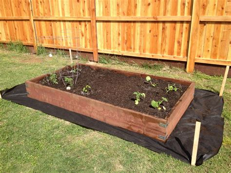 simple diy vegetable garden box made using 2x12 pressure