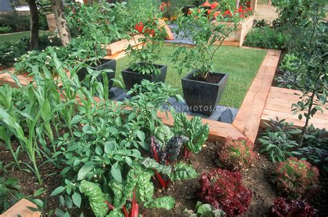 small space vegetable garden at home plant flower