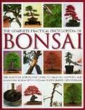 bonsai the beginners guide books bonsai basics