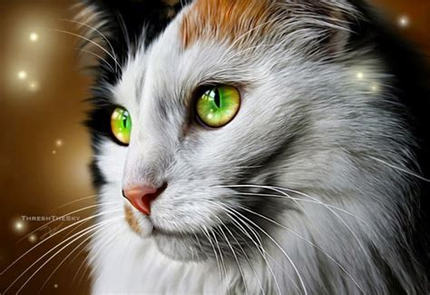 cat painting 20 beautiful realistic cat drawings to inspire you