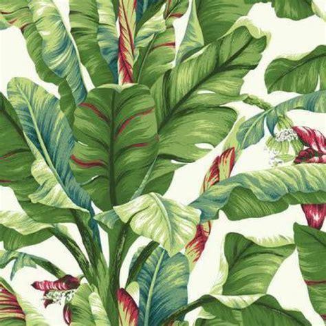 banana tropical wallpaper banana leaf wallpaper warehouse