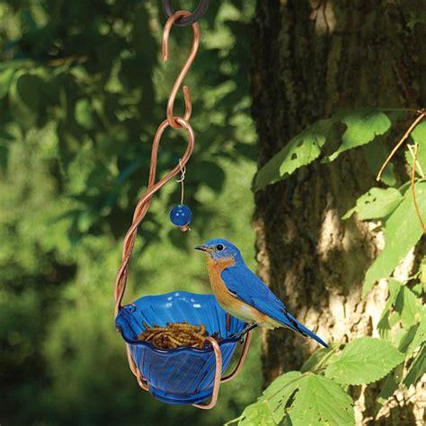 copper bluebird mealworm feeder