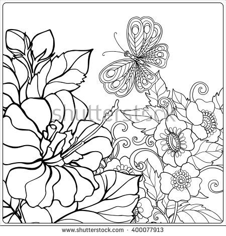 coloring pages of birds and butterflies stock images royalty free images vectors shutterstock
