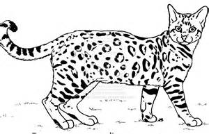 bengal cat lineart by canis simensis on deviantart