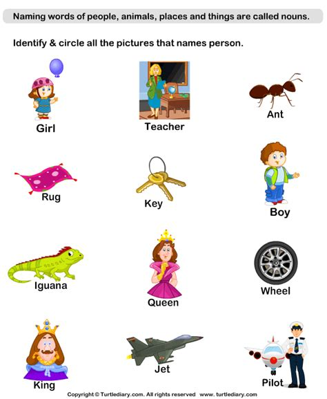 Noun Worksheets For Kindergarten by Identify Person Nouns Worksheet Turtle Diary