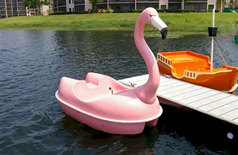 flamingo pedal boat for sale pink flamingo in action 1