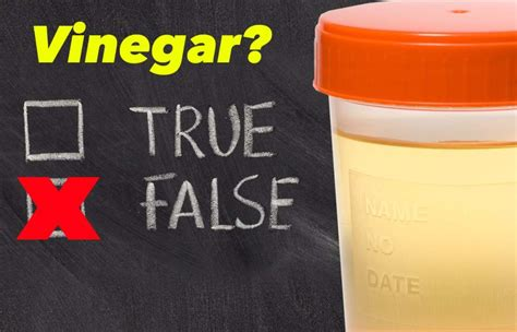 Detox Your System From Drugs In 48hours by Pass A Test With Vinegar Detox Pills Pass A Urine