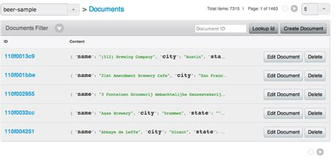 Couchbase Document Type