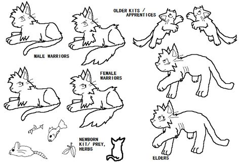 warrior cat template warriorcats favourites by deathkisser100 on deviantart