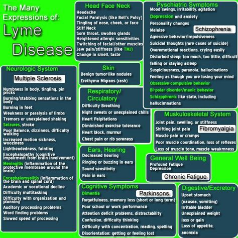 lyme disease symptoms six indicators best 25 symptoms of tick bite ideas on tick bite symptoms tick symptoms