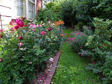 lily garden algonquin