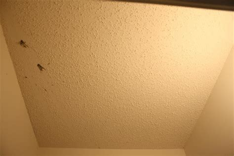 get rid of popcorn ceilings 17 best images about for the home on grey