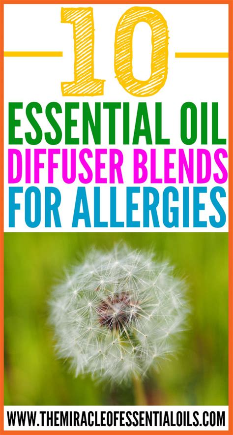 essential oils for skin allergies 10 essential diffuser blends for allergies the miracle of essential oils