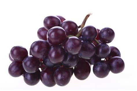 imagenes de vinos uvas comiendo y aprendiendo la uva no engorda