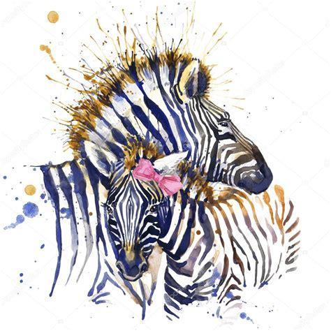 zebra fashion illustration zebra t shirt graphics zebra illustration with splash watercolor textured background
