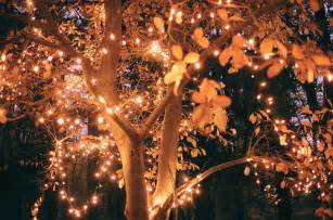 amazing awesome beautiful bright christmas lights
