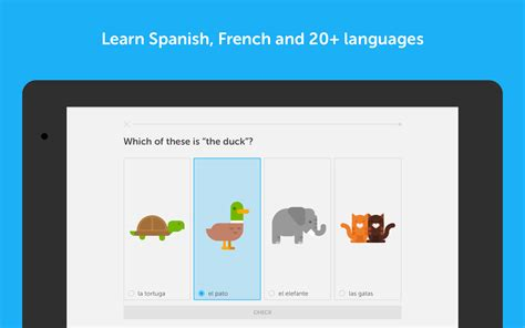 duolingo apk duolingo learn languages free apk android education apps
