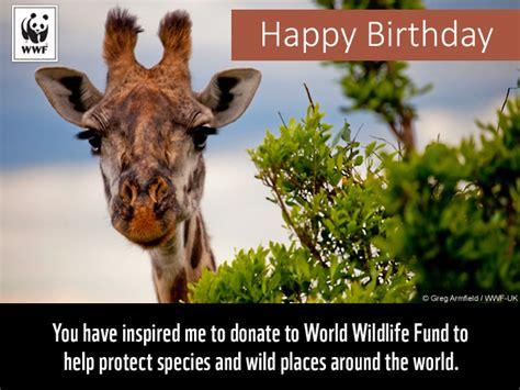 birthday ecards  wwf  birthday ecards world wildlife fund