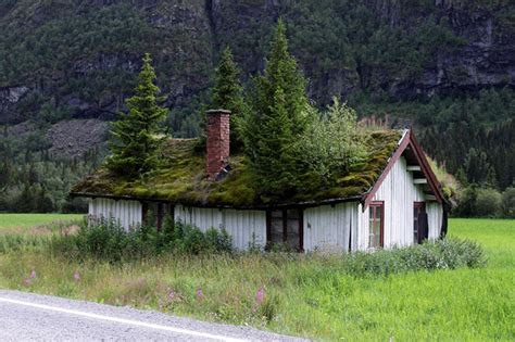 houses in norway green roofs in norway 171 friskstyle friskstyle