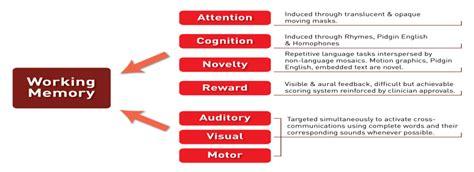Psychology Essays On Memory by Psychology Essay On Memory Internetupdater Web Fc2