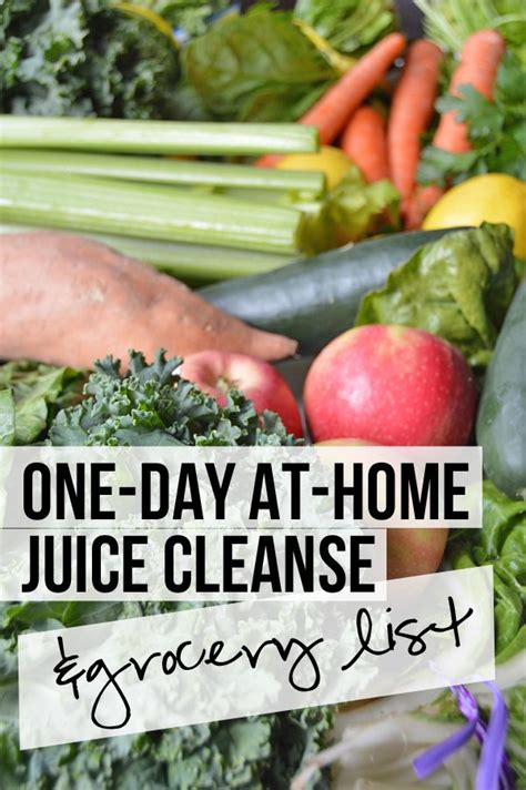 1 Day Juice Detox Recipes by Best 10 One Day Cleanse Ideas On One Week