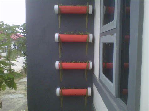 Pipa Hidroponik Di Dinding hidroponik seledri di sudut rumahku sistem vertikultur