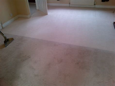 upholstery cleaning coventry coventry professional carpet cleaning washing services