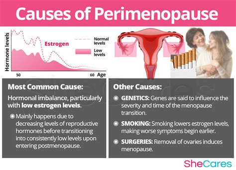 how menopause can happen with breast cancer treatments perimenopause symptoms shecares com