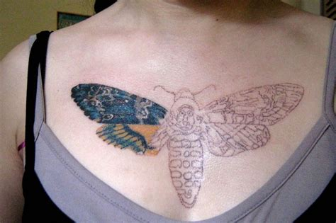 tattoo design process moth images designs
