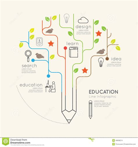 Flat Linear Infographic Education Pencil Tree Outline Concept Stock Vector Image 49638274 Linear Flat Family Tree Infographics