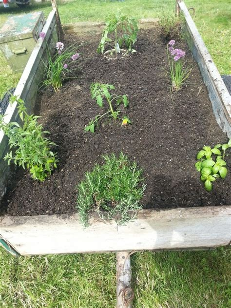 portable herb garden repurpose an old trailer as an herb garden plus its