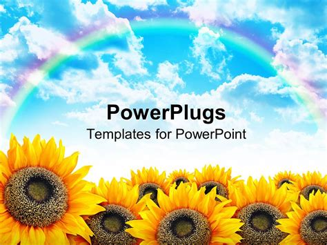 Powerpoint Template Beautiful Yellow Sunflower Field With Blue Sky And Rainbow 28116 Sunflower Powerpoint Template