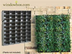 Indoor Vertical Garden Kit Drip Line Irrigation For Green Wall Systems Vertical