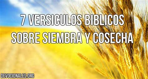 145217 El Senor Y Lo Demas Cuentos Ebook by 7 Vers 237 Culos B 237 Blicos Sobre La Siembra Y Cosecha
