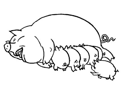 coloring page of a pig pig coloring pages coloringpages1001