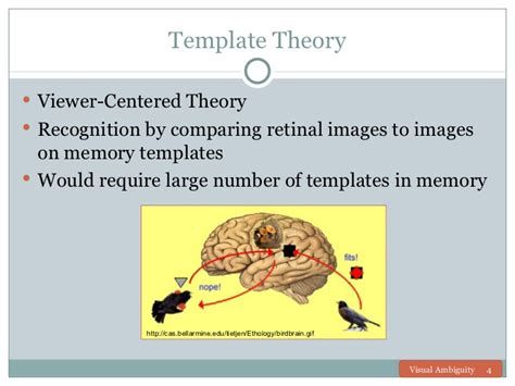 template matching theory visual ambiguity presentation team assignment