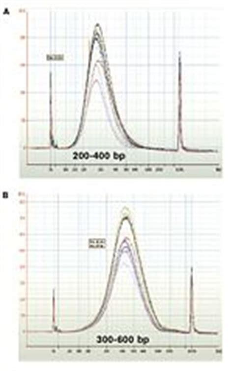 spri bead size selection biomicrocenter spri works openwetware