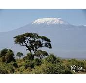 Alquiler Tanzania En El Pa&237s Para Sus Vacaciones Con IHA
