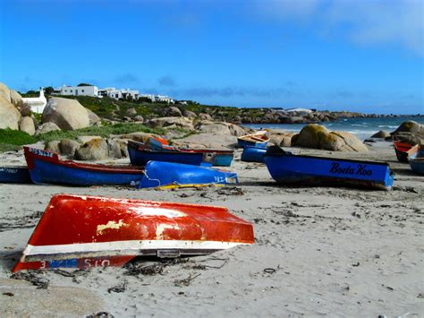 bid or bay a day in paternoster bidorbuy official
