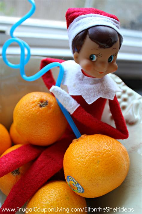 Shelf Of Oranges by On The Shelf Ideas Drinks From An Orange