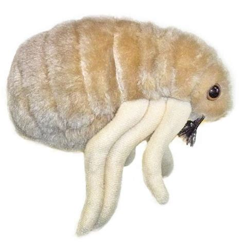 Giant Microbes Flea