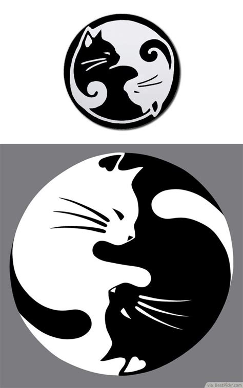 cat yin yang tattoo 603 best design vector silhouette line art images on