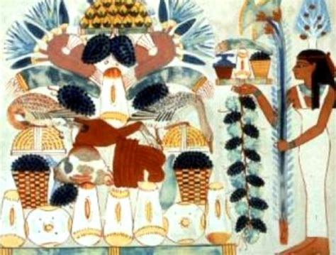 alimentazione degli egizi il cibo degli egizi imparo